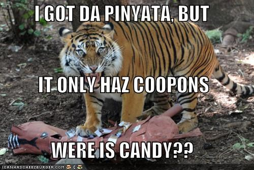 I GOT DA PINYATA, BUT  IT ONLY HAZ COOPONS WERE IS CANDY??
