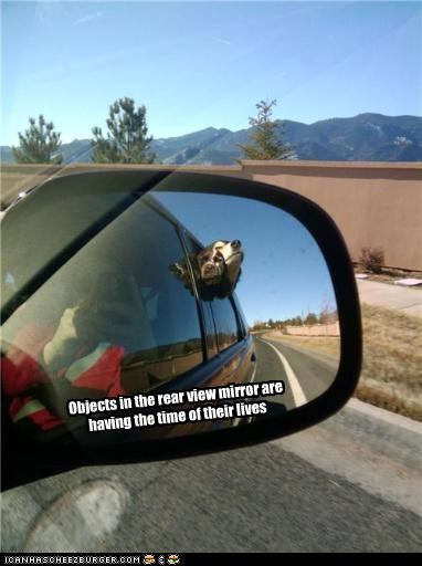Objects in the rear view mirror are having the time of their lives