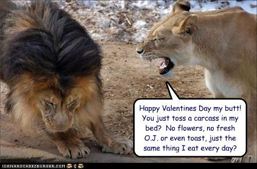 Happy Valentines Day my butt!  You just toss a carcass in my bed?  No flowers, no fresh  O.J. or even toast, just the same thing I eat every day?