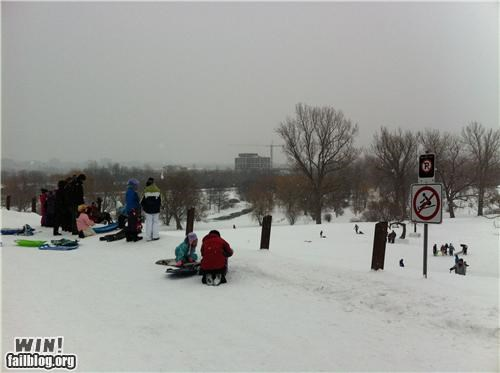 disobedience,oh canada,sledding,snow,winter