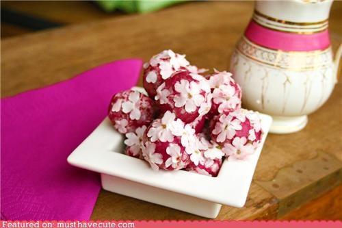 edible flowers,flowers,pink,Truffles,white chocolate