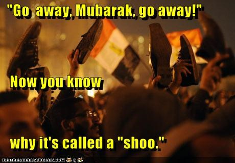"""Go  away, Mubarak, go away!""    Now you know    why it's called a ""shoo."""