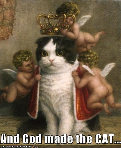 art,cat,color,funny,painting