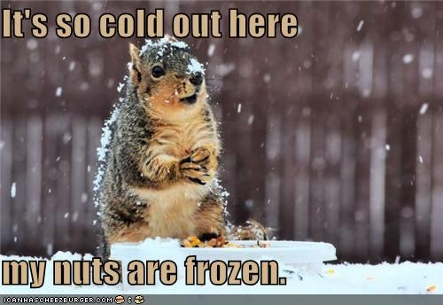It's so cold out here my nuts are frozen.