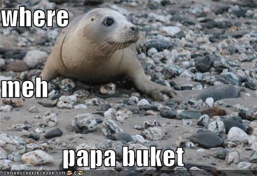 where meh papa buket