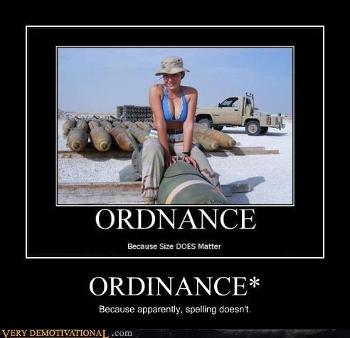 ORDINANCE*