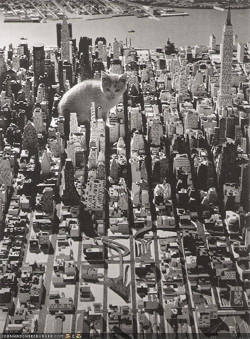 attack,big,city,cyoot kitteh of teh day,huge,model,monster