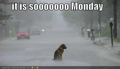 it is sooooooo Monday