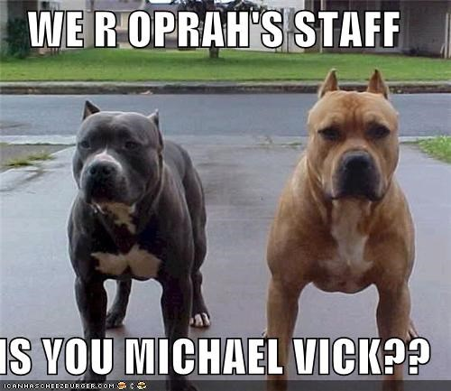 WE R OPRAH'S STAFF  IS YOU MICHAEL VICK??