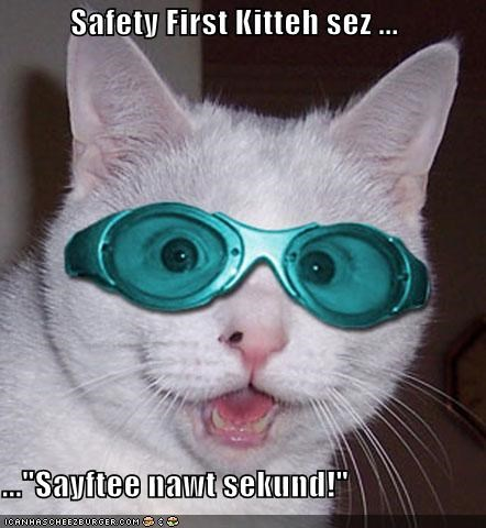 "Safety First Kitteh sez ...  ...""Sayftee nawt sekund!"""
