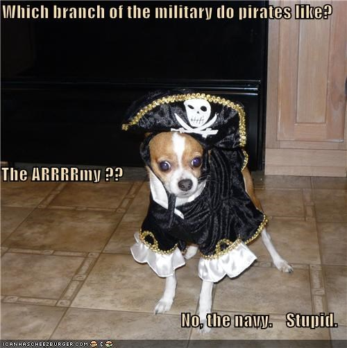 Which branch of the military do pirates like? The ARRRRmy ?? No, the navy.    Stupid.