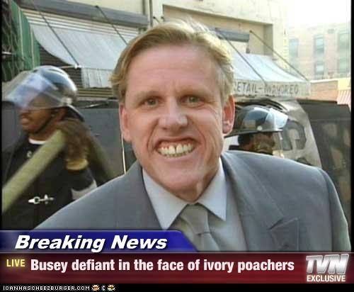 Breaking News - Busey Brave, Still Crazy