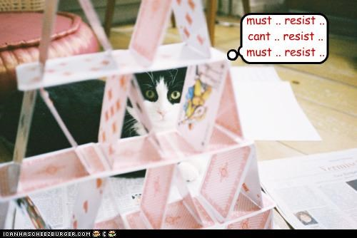 cant,caption,captioned,cards,cat,delicate,do not want,do want,fragile,house,house of cards,must,resist,torn