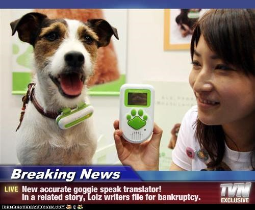 Breaking News - New accurate goggie speak translator!   In a related story, Lolz writers file for bankruptcy.
