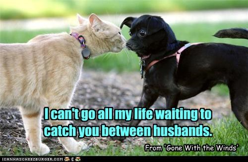 I can't go all my life waiting to catch you between husbands.