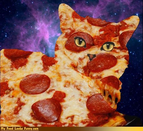 Funny Food Photos - Pizza Cat