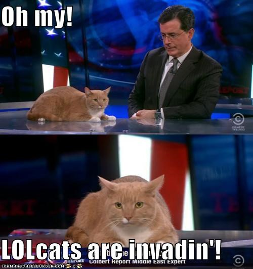 Oh my!  LOLcats are invadin'!