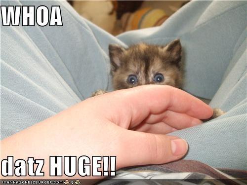 WHOA  datz HUGE!!