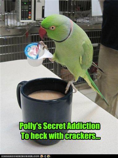 Polly's Secret Addiction