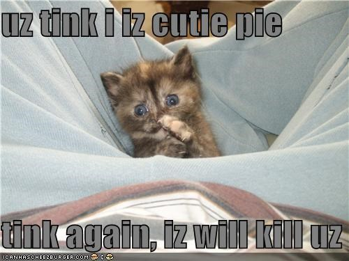 uz tink i iz cutie pie  tink again, iz will kill uz