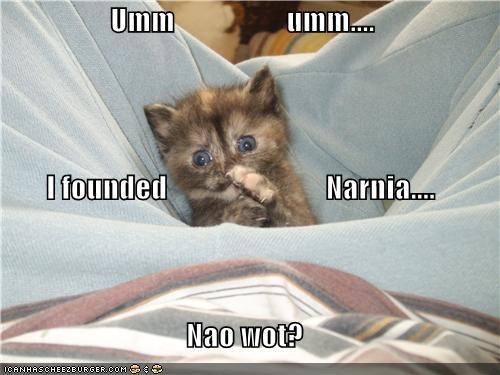 Umm                   umm.... I founded                           Narnia.... Nao wot?