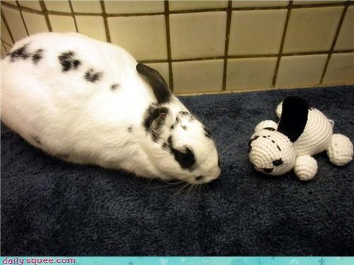 bunny,christmas,ear,friend,friends,friendship,lookalike,one,one-eared,present,reader squees,stuffed animal