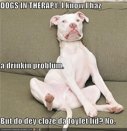 DOGS IN THERAPY: I know I haz a drinkin problum. But do dey cloze da toylet lid? No.