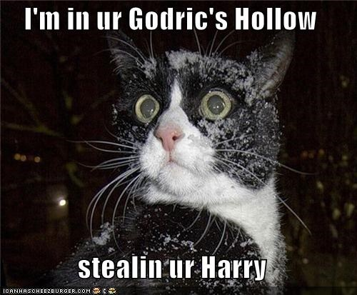 I'm in ur Godric's Hollow  stealin ur Harry
