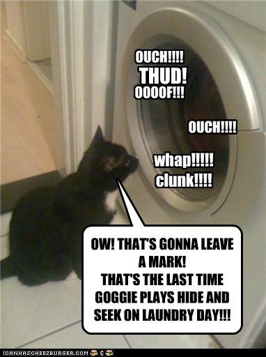 OW! THAT'S GONNA LEAVE A MARK! THAT'S THE LAST TIME GOGGIE PLAYS HIDE AND SEEK ON LAUNDRY DAY!!!