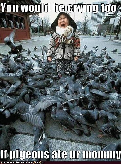 You would be crying too  if pigeons ate ur mommy