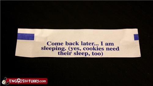 food,fortune cookie,sleep
