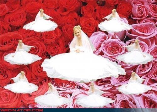 bad photoshop,funny wedding photos,roses,tiny brides