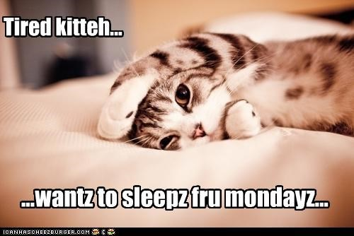 ...wantz to sleepz fru mondayz...