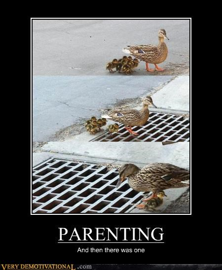 bad,ducks,grate,parents,sad face