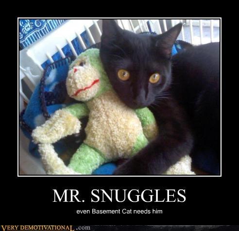 monkey,basement cat,snuggles