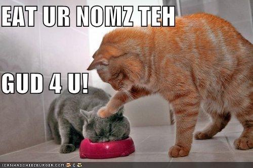 EAT UR NOMZ TEH GUD 4 U!