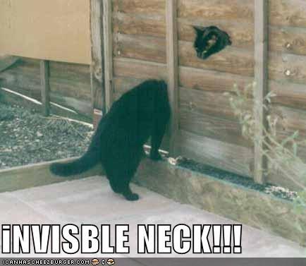 iNVISBLE NECK!!!
