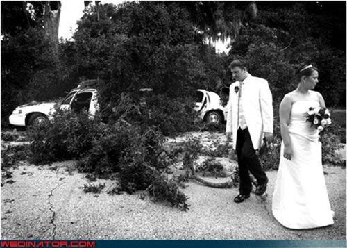 car crash,car wreck,disaster,funny wedding photos,monochrome