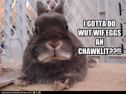 I GOTTA DO WUT WIF EGGS AN CHAWKLIT??!!