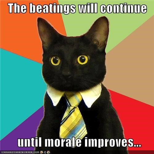 The beatings will continue         until morale improves...