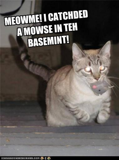 MEOWME! I CATCHDED A MOWSE IN TEH BASEMINT!