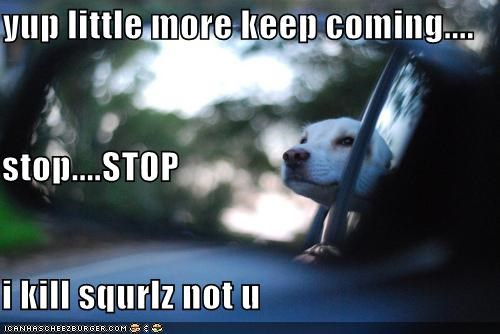 yup little more keep coming.... stop....STOP i kill squrlz not u