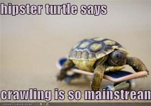 hipster turtle says  crawling is so mainstream