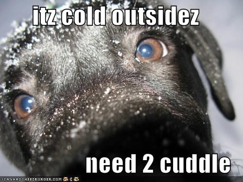 itz cold outsidez  need 2 cuddle