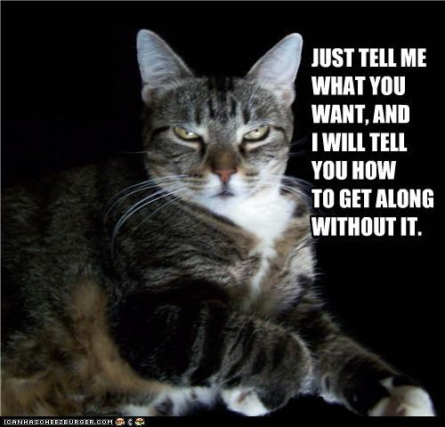 caption,captioned,cat,denial,get along,How To,mean,response,tell me,unsympathetic,want,what,without