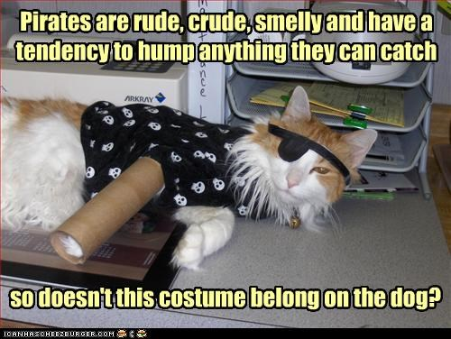 asking,belong,caption,captioned,cat,correct,costume,crude,dogs,dressed up,explanation,Hall of Fame,outfit,pirates,proper,question,rude,smelly