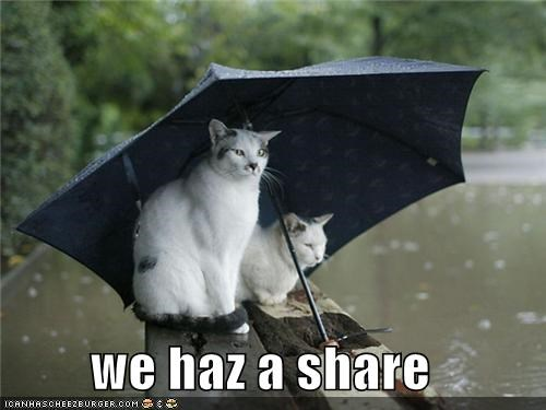 we haz a share