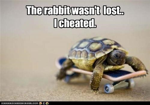 The rabbit wasn't  lost..  I cheated.