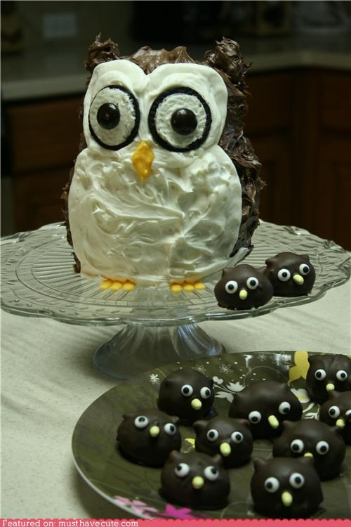 cake,chocolate,epicute,frosting,Oreos,Owl,owlets,Truffles