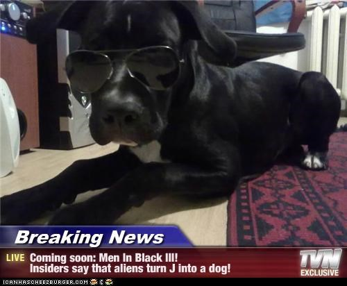 Breaking News - Coming soon: Men In Black III!                             Insiders say that aliens turn J into a dog!